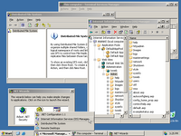Desktop with applications in Windows Server 2003 Web