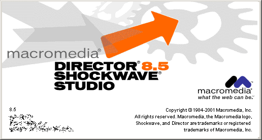 Splash in Macromedia Director 8.5
